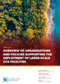 Overview of Organisations and Policies Supporting the Deployment of Large-Scale CCS Facilities